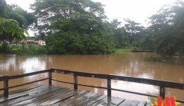 Programa Maranhão Verde